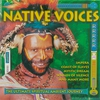 Couverture de l'album Native Voices, Vol. 1