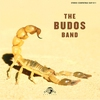Cover of the album The Budos Band II