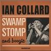 Couverture de l'album Swamp Stomp and Boogie