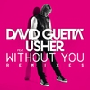 Couverture du titre Without You (Nicky Romero Remix) [feat. Usher]