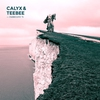 Cover of the album FabricLive 76: Calyx & TeeBee