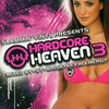 Couverture de l'album Hardcore Heaven 3