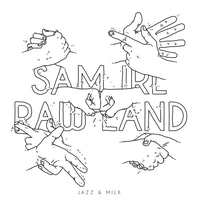 Cover of the track Raw Land