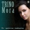 Cover of the track Te Quiero Todavia