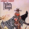 Cover of the album Fallen Angel
