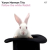 Couverture de l'album Follow the White Rabbit