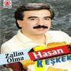 Couverture de l'album Zalim Olma