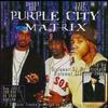 Cover of the album Purple City Matrix