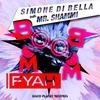 Couverture du titre Boom Boom Fyah (feat. Mr. Shammi) [Radio Edit]