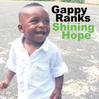 Cover of the track Shining Hope