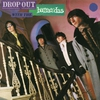 Cover of the album Drop Out With the Barracudas