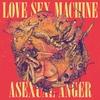 Couverture de l'album Asexual Anger