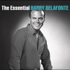 Couverture de l'album The Essential Harry Belafonte