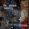 Couverture de l'album Permanent Crisis