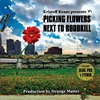 Cover of the album Picking Flowers Next to Roadkill
