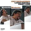 Cover of the album Wonderful! Wonderful!