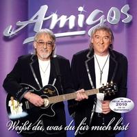 Cover of the track Weißt du, was du für mich bist