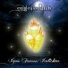 Couverture de l'album Akashic Recordings
