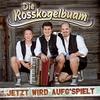 Cover of the track Und wieder wars der Wein