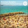 Couverture de l'album Summer Sampler