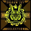 Couverture de l'album Bunny Tiger Selection Vol. 7
