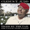 Couverture de l'album Tiger By the Tail (The Tale of Tiger Woods) - Single