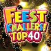 Couverture de l'album Feestknallers Top 40