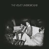 Cover of the track The Velvet Underground