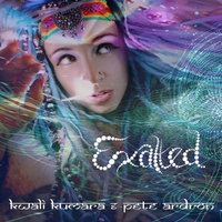 Cover of the track Exalted