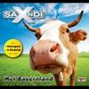 Couverture de l'album Mei Bayernland