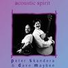 Cover of the album Acoustic Spirit