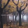 Cover of the album Sol29