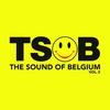 Cover of the album The Sound of Belgium Vol. 2