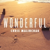 Couverture de l'album Wonderful - Single