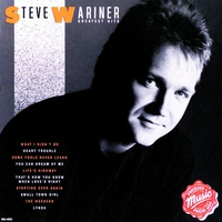 Cover of the track Steve Wariner: Greatest Hits