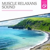 Couverture de l'album Muscle Relaxans Sound