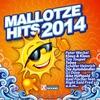 Couverture de l'album Mallotze Hits 2014