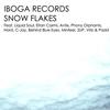 Couverture de l'album Snow Flakes