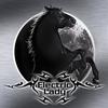 Couverture de l'album Black Moon