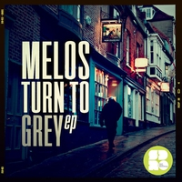 Cover of the track Turn to Grey