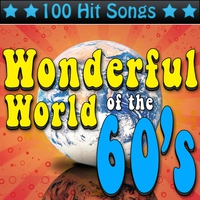 Couverture du titre Wonderful World of the 60's - 100 Hit Songs (Re-Recorded Versions)