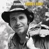Couverture de l'album The Essential Bobby Bare