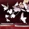 Cover of the album Sakura Swirl