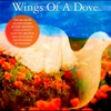 Cover of the album Wings of a Dove