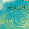 Cover of the album Shamanic Healing