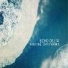 Cover of the album Digital Lifeforms