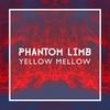 Couverture du titre Phantom Limb
