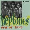 Couverture de l'album Sea of Love