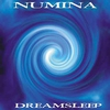 Cover of the album Dreamsleep
