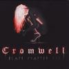 Couverture de l'album Black Chapter Red